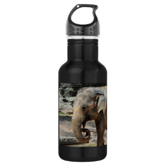 Laughing Asian Elephant Zoo wildlife Stainless Steel Water Bottle