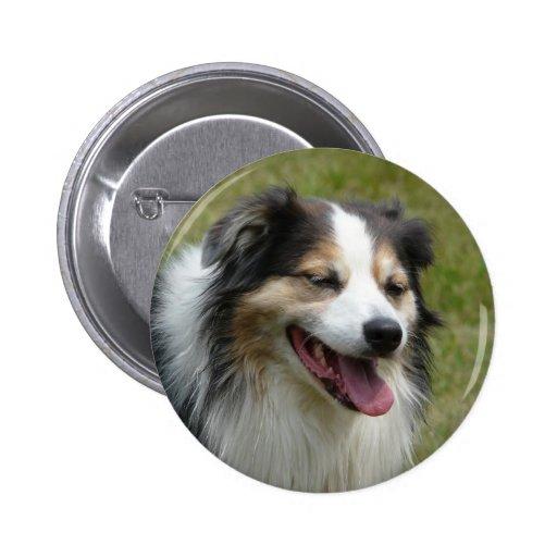Laughing Aussie  Dog 2 Inch Round Button