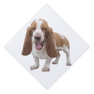 Laughing Basset Hound Graduation Cap Topper