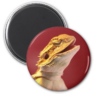 Laughing Bearded Dragon Magnet