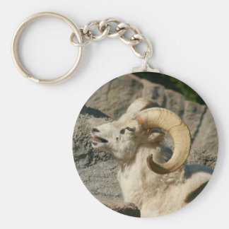 Laughing Bighorn Sheep Keychain