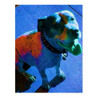 Laughing Blue Dog postcard