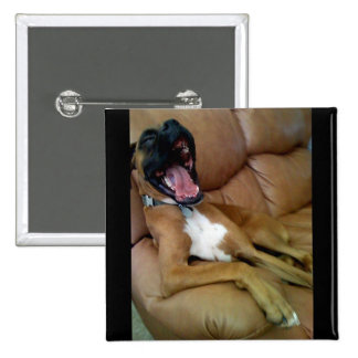 laughing boxer buttons