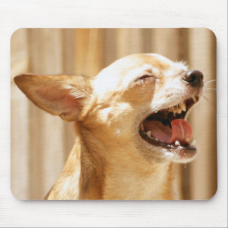 Laughing Chihuahua Mouse Pad