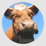 Laughing cow classic round sticker