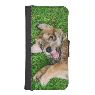 Laughing Dog Berger Picard Puppy Protect Cover