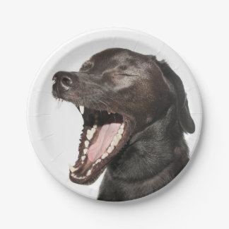 laughing dog paper plate
