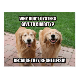 Laughing Golden Retriever Funny Shellfish Joke Postcard