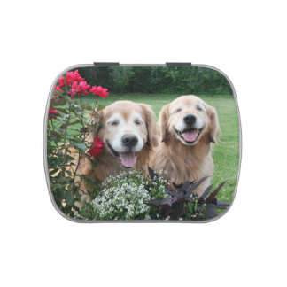 Laughing Golden Retrievers Outside by Roses Jelly Belly Candy Tin