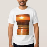 Laughing Gull Larus atricilla) silhouetted T Shirt