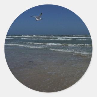 Laughing Gull Round Stickers