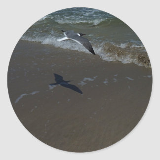 Laughing Gull Stickers