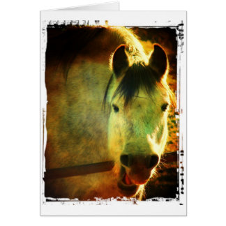 Laughing Horse, Birthday Card