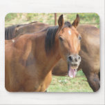 Laughing Horse Mouse Pads