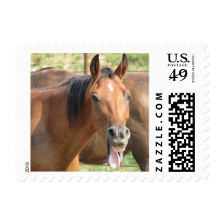 Laughing Horse Postage Stamps