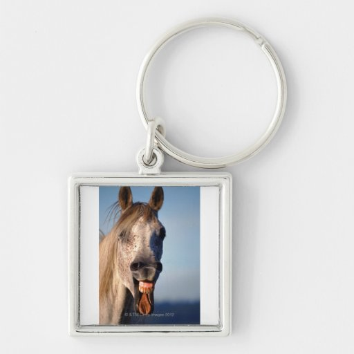 laughing horse Silver-Colored square keychain