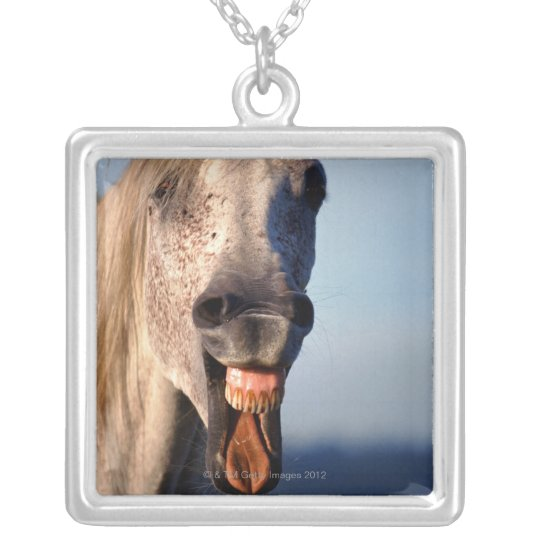 laughing horse silver plated necklace