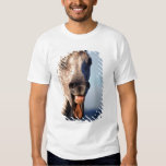 laughing horse t-shirts