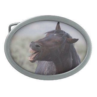 Laughing Horse Wild Mustang Belt Buckle