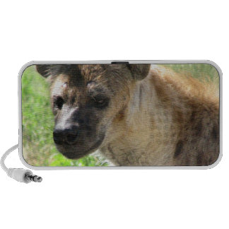 Laughing Hyena Portable Speakers