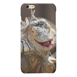 Laughing Iguana Photography Matte iPhone 6 Plus Case