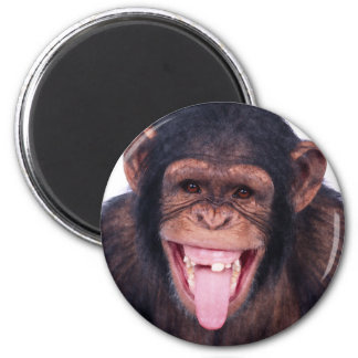 Laughing Monkey 2 Inch Round Magnet