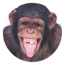 Laughing Monkey Classic Round Sticker