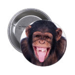 Laughing Monkey Pins