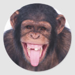 Laughing Monkey Stickers