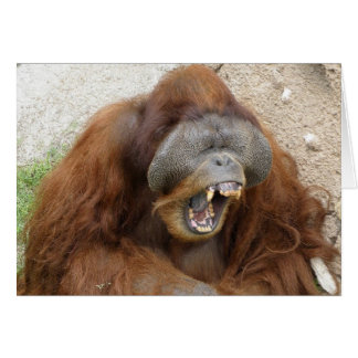 Laughing Orangutan Card