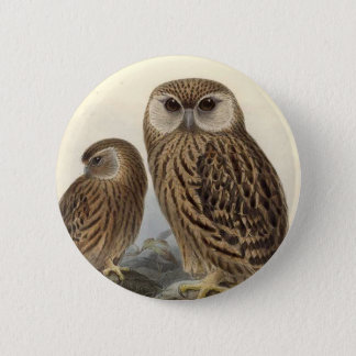 Laughing Owl Vintage Illustration Button