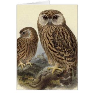 Laughing Owl Vintage Illustration Card