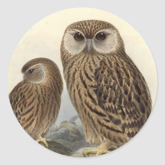 Laughing Owl Vintage Illustration Classic Round Sticker