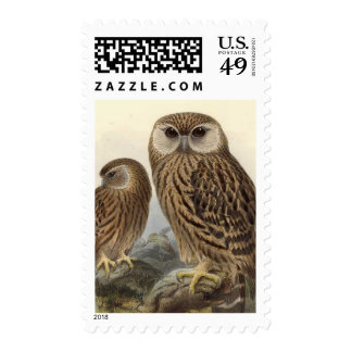 Laughing Owl Vintage Illustration Stamp