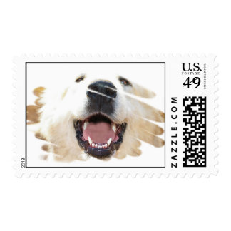 Laughing Pyrenees Postage