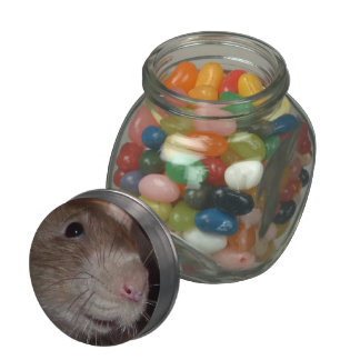 laughing rat candy tin jelly belly candy jar