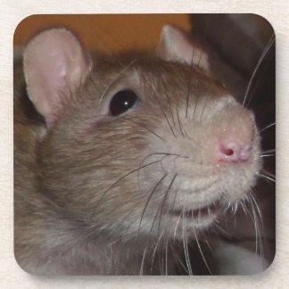 laughing rat cork coasters