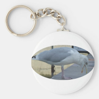 Laughing Seagull Keychain