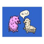 Laughing Sheep Postcard