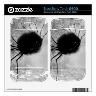 Laughing spider by Bertrand-Jean Redon BlackBerry Skins