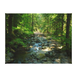 Laughingwater Creek at Mount Rainier National Park Canvas Print