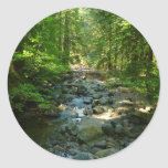 Laughingwater Creek at Mount Rainier National Park Classic Round Sticker