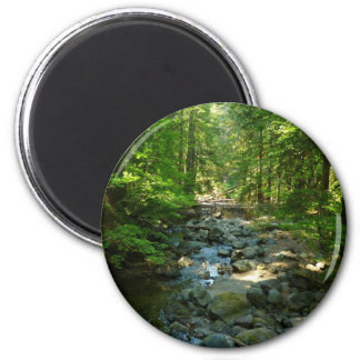 Laughingwater Creek at Mount Rainier National Park Magnet