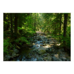 Laughingwater Creek at Mount Rainier National Park Poster
