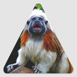 Laught out loud happy and joy cotton top tamarin triangle sticker