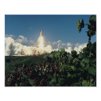 Launch of Space Shuttle Columbia (STS-58) Poster