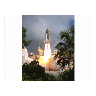launch with palms postcard