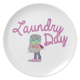 Laundry Day Dinner Plates