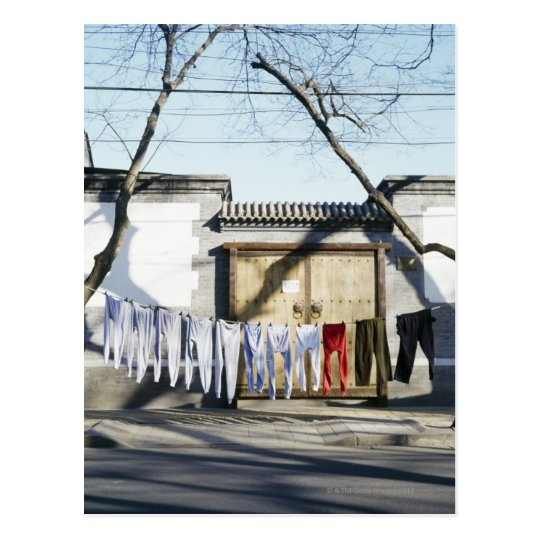 Laundry Drying on Clotheslines Postcard