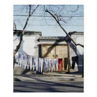 Laundry Drying on Clotheslines Posters